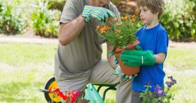 Køb en taburet til gør set selv projekter i haven